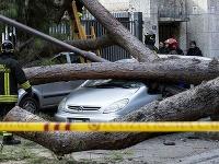 Talianski hasiči odstraňujú spadnutý strom.