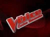 Brat slovenskej speváčky skúsil šťastie v The Voice.
