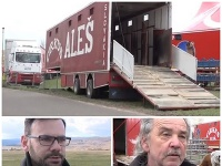 Cirkus Aleš dostal od primátora Pezinka zákaz vystúpiť.