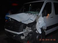 Pri autonehode uhynuli dva kone.