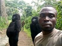 Gorily pózovali na selfie so svojimi záchrancami