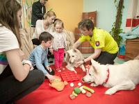 Terapeutka Ľubica Bátoryová počas terapie pre detských onkologických pacientov za účasti špeciálne vycvičených psov