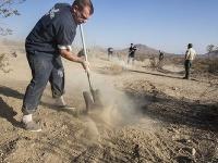 Robotník zakopáva plytký hrob, kde boli pozostatky