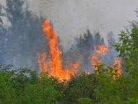 Požiar na Žabom majeri v bratislavskej Rači