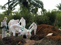 Svetová zdravotnícka organizácia vyhlásila v súvislosti s epidémiou eboly stav ohrozenia