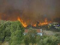 Vyše 1000 hasičov bojuje s lesnými požiarmi v Portugalsku