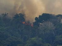 Požiare v amozonskom dažďovom pralese neutíchajú.
