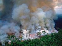 Požiare v Bolívii sú obrovské