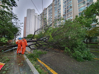 Južnú oblasť Južnej Kórey zasiahol tajfún Tapah