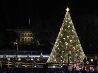 Vianočný strom vo Washingtone