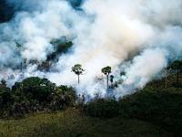 Lesné požiare v Čile