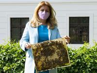 Včely sú podľa Čaputovej symbolom toho, ako je v prírode všetko prepojené