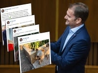 Spoločnosť sa neraz začuduje nad obsahom statusov Igora Matoviča.