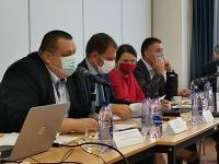 Pandemická komisia