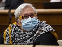 Poslankyňa OĽaNO Monika Kozelová bola odfotená v netradičnom outfite.
