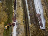 Mŕtvoly zvierat vystúpili na zemský povrch pod tlakom plynov uvoľnených počas ich rozkladu.