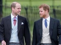 Takýto je skutočný vzťah medzi princom Harrym a jeho bratom Williamom