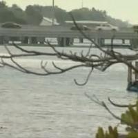 Telá detí našli v kanáli v Delray Beach