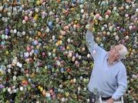 Volker Kraft a jeho zvláštny strom