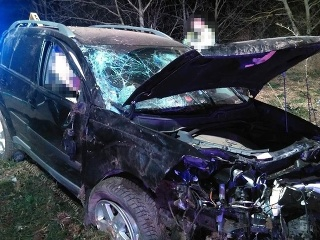 Tragická dopravná nehoda: Vodič