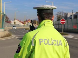 Policajti zastavili mladíka (22):