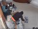 Zverejnili VIDEO megalúpeže v
