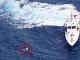 Ruskú turistku zachránila loď