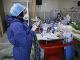 Zdravotná sestra pripravuje lieky