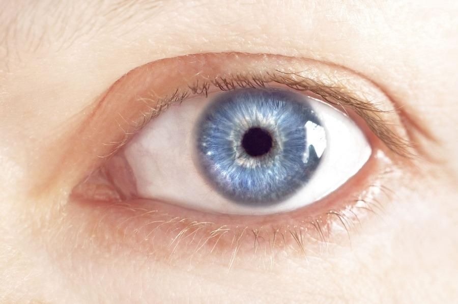 65a83c48d Vedci konečne zistili, prečo máme modré oči: Vďaka dávnemu ...