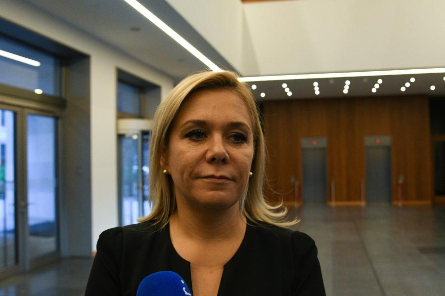 Ak bolo Slovensko zapletené do kauzy únosu Vietnamca, bolo to nevedome, myslí si Saková | Topky.sk