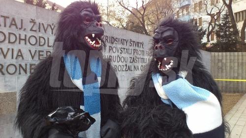 Výsledok protestu Gorila 2: