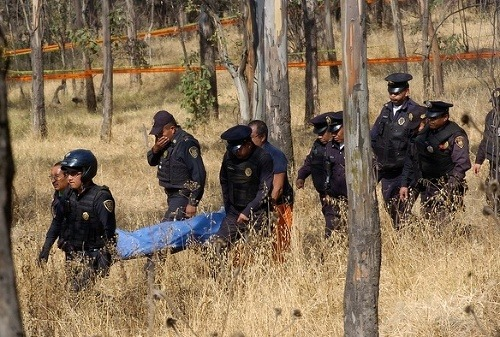 Útoky psov v Mexiku