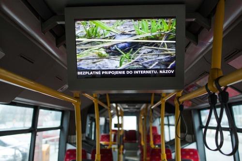 Internet v autobusoch využilo