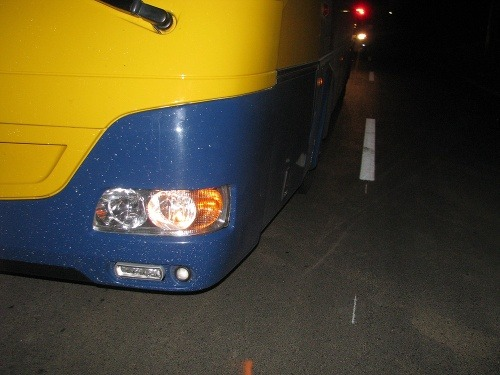 Adamka (6) zrazil autobus
