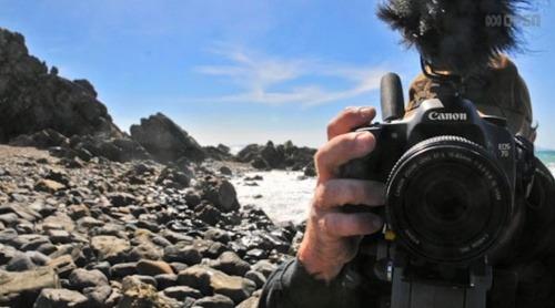 Austrálsky fotograf Brenden Borrellini