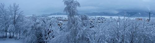 Snehová kalamita drvila Slovensko: