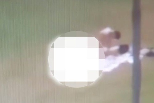 otvorené tučné mačička pics