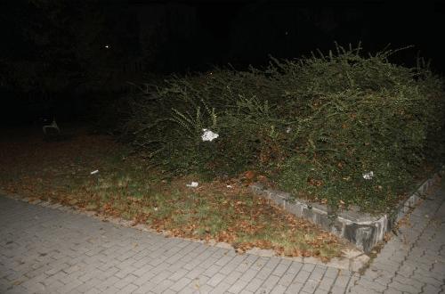 Drzý zlodej ukradol Češke kabelku na FOTO  Netušil 6a2174560d4