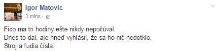 Status Igora Matoviča
