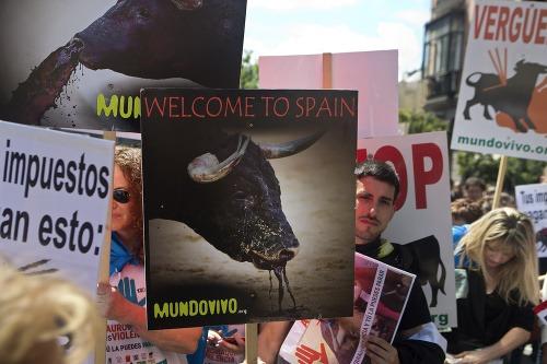 Proti býčím zápasom protestovali