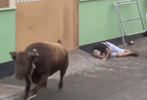Nakrúcal rozzúreného býka, situácia