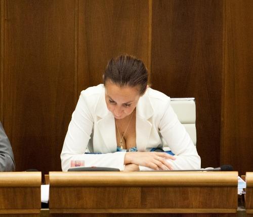 Poslanci schvaľujú zákony: Súbežné