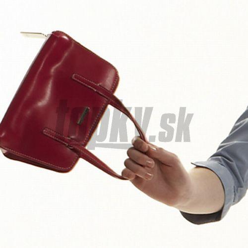 Z auta ukradol kabelku s vyše 130 tisíc eurami! – galéria  fd490e043ad