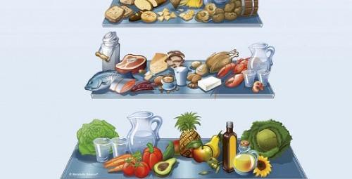 Kniha Metabolic Balance