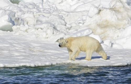 Zhrození klimatológovia: Toto mesto