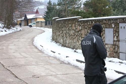 PRÁVE TERAZ Policajné manévre