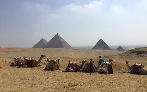V Egypte dúfajú vo
