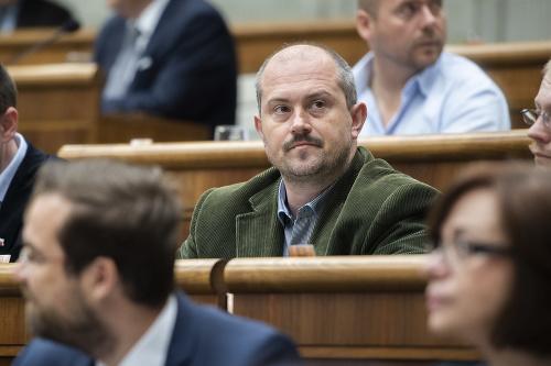 Poslanec a predseda strany