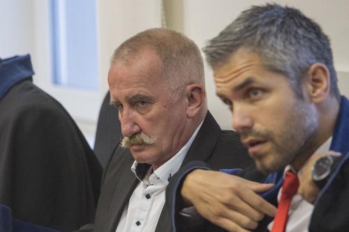 Stanislava Mizíka Špecializovaný trestný
