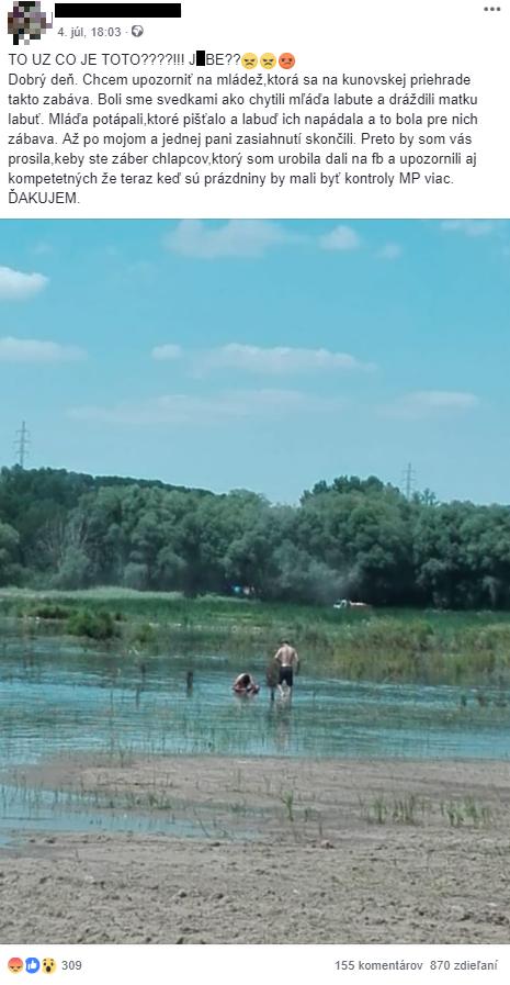 Mládež potápala mláďa labute.